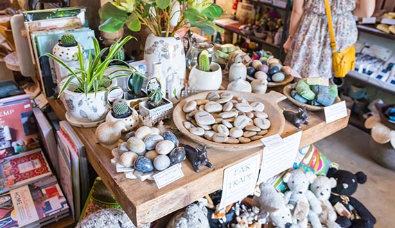 A number of decorative gemstones and pot plants displayed on a wooden bench