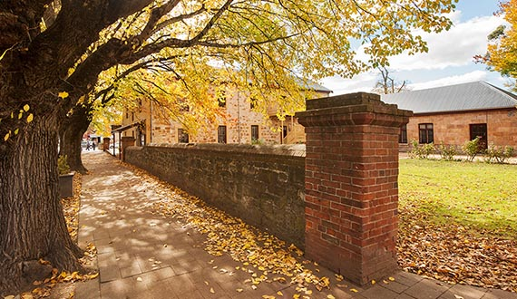 An old brick wall lines a large building next to an Autumn street