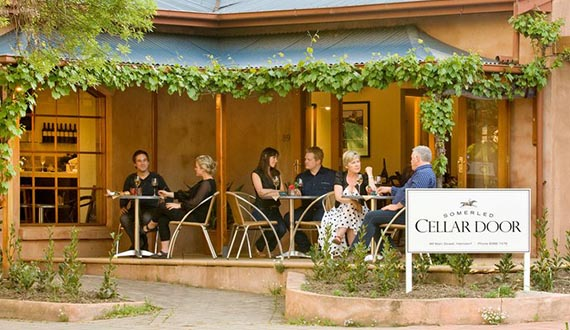 A number of diners enjoying wine on a patio surrounded by vines