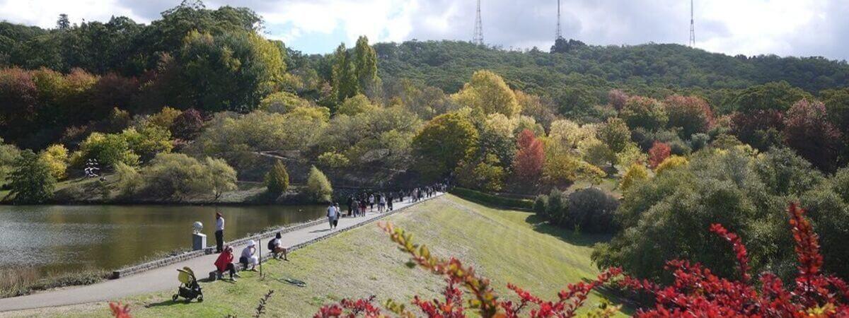 Adelaide_Hills_School_Holidays_Mount_Loft_Garden