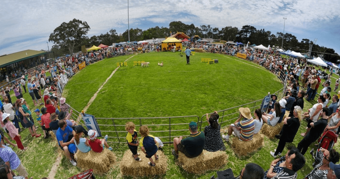 Meadows_Country_Fair