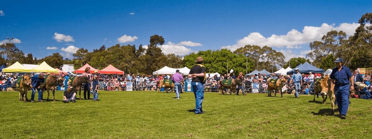 Meadows_Country_Fair_Community