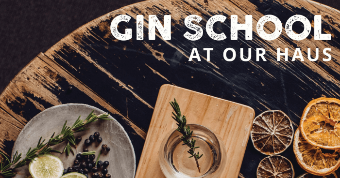 Gin_School_Feature